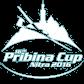 Pribina Cup
